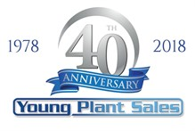Young Plant Sales